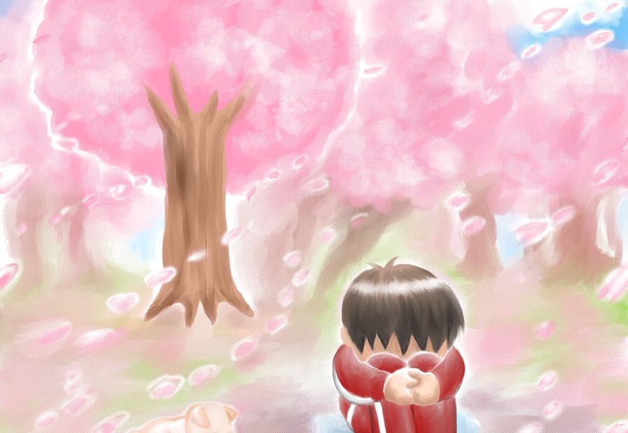 花見、桜、春